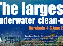 largestunderwatercleanup
