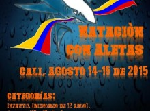 postercopacolombia2015