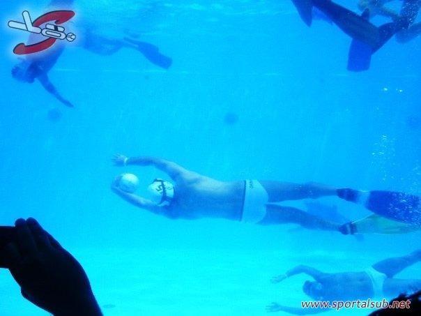 orcasdea
