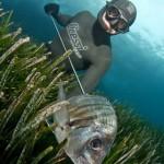 Daniel Gospic repite primer puesto en el X Master de Pesca Submarina Ciudad de Palma - España