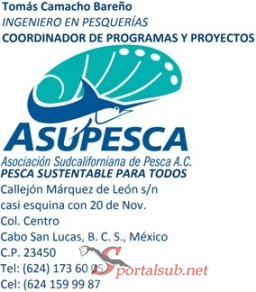 image002 Torneo Pesca Deportiva Submarina de Jurel en La Paz, Baja California. México