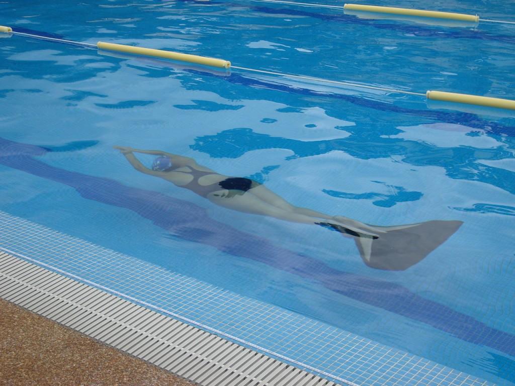 DSC00086 1024x768 Resultados Campeonato Nacional Interclubes de Apnea en piscina 2011 Venezuela