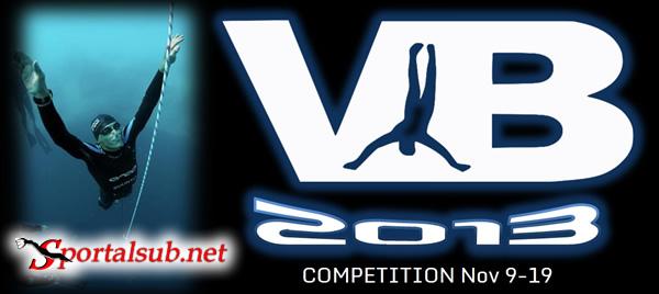 verticalblue2013